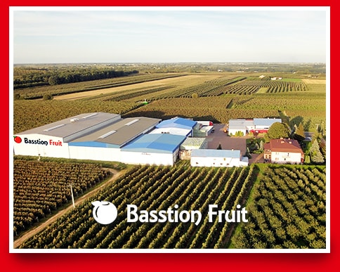 Basstion Fruit